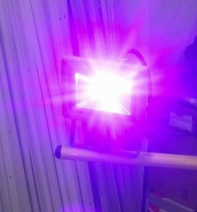 Halogen LED UV Ultrafiolet